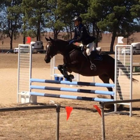 Showjumping class